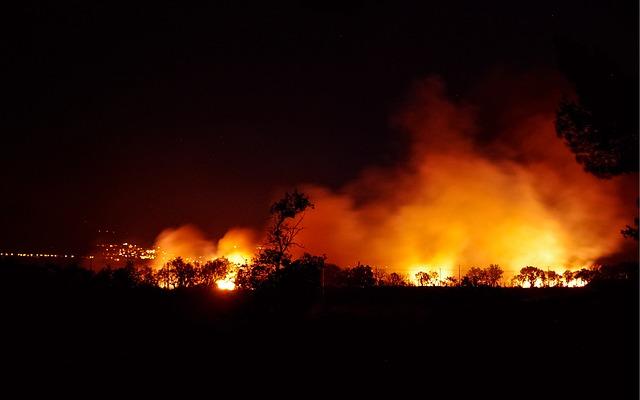 Kebakaran Hutan Penyebab 100.000 Kematian Prematur